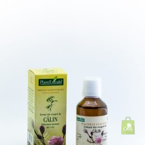 Extract din muguri de calin 50 ml - Plant Extract