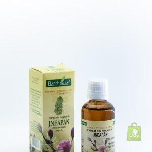 Extract din muguri de jneapan 50ml - Plant Extract