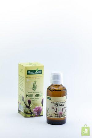Extract din muguri de porumbar 50ml - Plant Extract